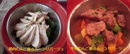 shimoda2012犬ご飯.jpg